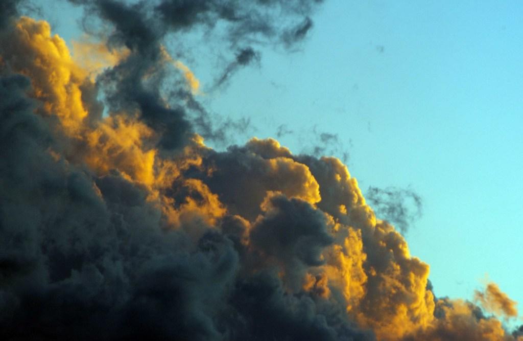 20111120_4.jpg