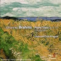 Brahms Piano Trios Op. 8, 101.jpg
