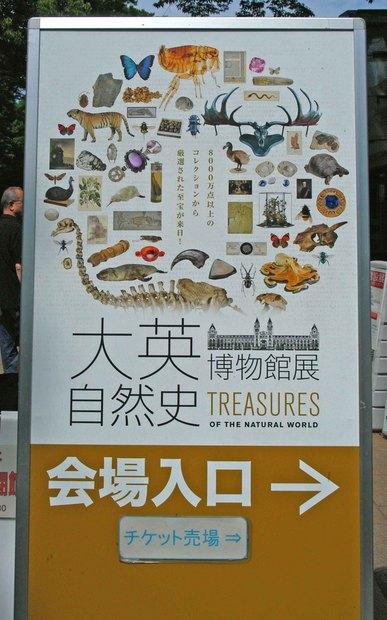 大英自然史博物館展_0.jpg