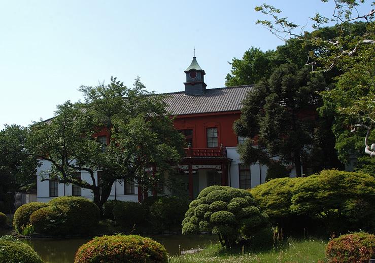 小石川植物園の花_10.jpg