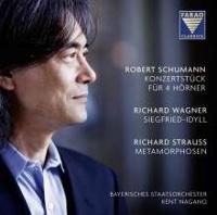Schumann, Wagner, Strauss .jpg