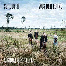 Schubert Aus der Ferne.jpg